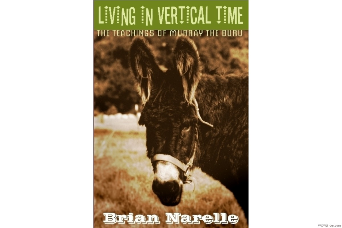 Book Cover: Living in Vertical Time